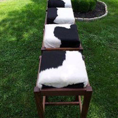 cow cushions on benches
